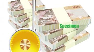 Accounts-Brochure-06-1024x993st